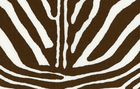 Super fly Zebra Printed Cotton Fabric Brown
