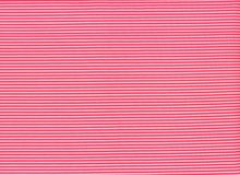 Swimwear Stripe Neon