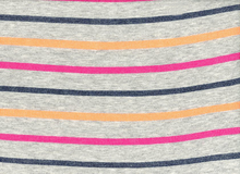 Terry Back Sweatshirt Stripe