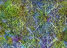 Trees Cotton Batik Bayou Green