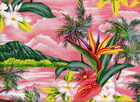 Tropical Cotton Pink