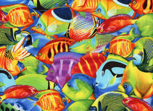Tropical Fish Field Cotton Multi