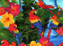 Tropical Parrots Cotton