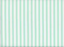 Twill Stripe Mint