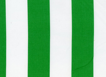 Two by Two Cotton Stripe Green