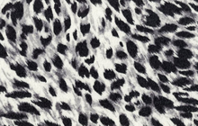 Woolen Double Cloth Leopard