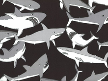 Yikes! Sharks Cotton in Black