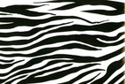 Zebra Stripe Oilcloth Fabric Black and White