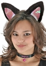 CAT EAR SET