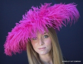 Fantastic Feather Fascinator
