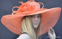 Hollywood Derby Hat