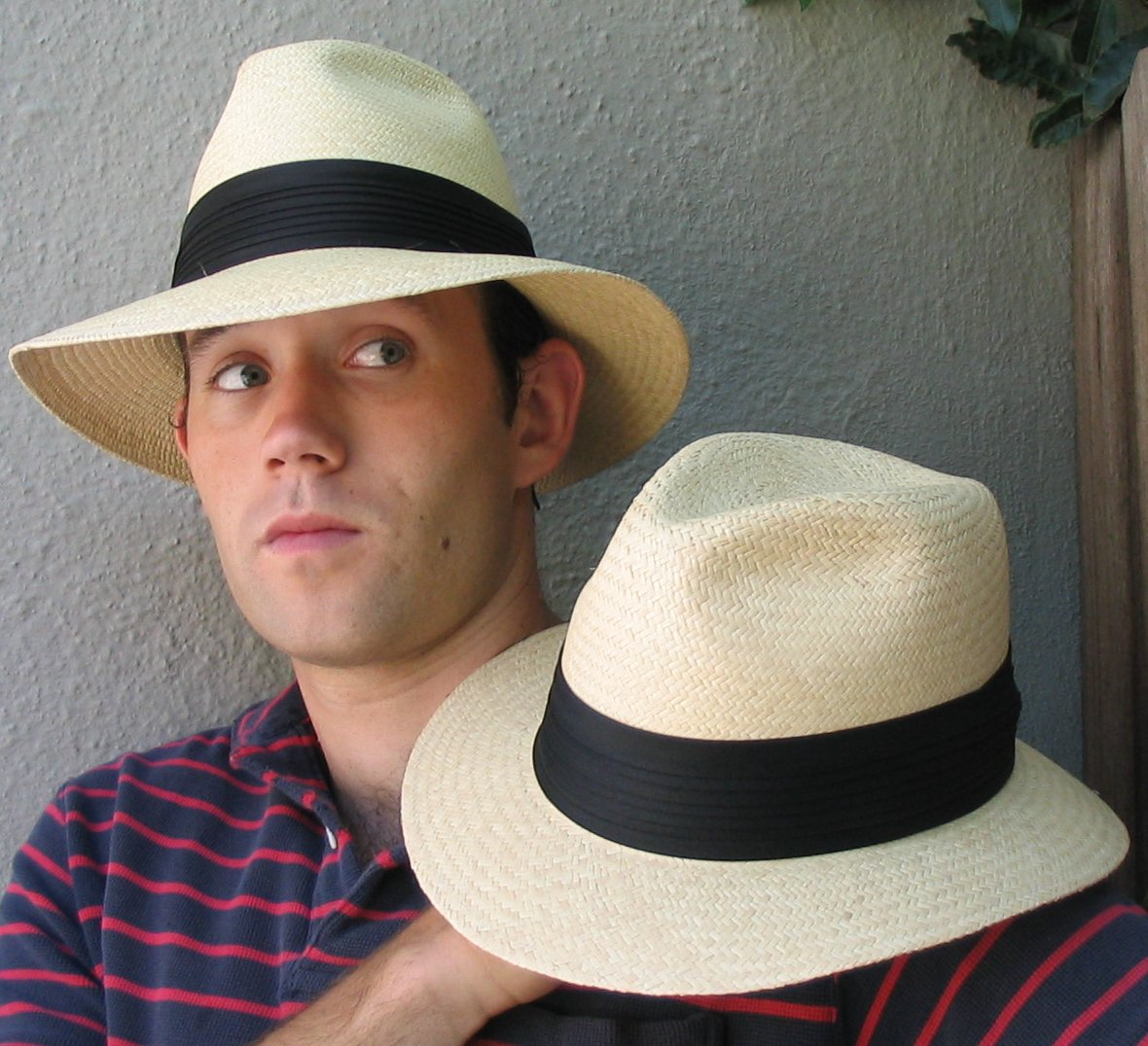 A Panama hat (toquilla straw hat) is a traditional brimmed straw hat of Ecuadorian origin. Traditionally, hats were made from the plaited leaves of the Carludovica palmata plant, known locally as the toquilla palm or jipijapa palm, [1] although it is a palm-like plant rather than a true palm.
