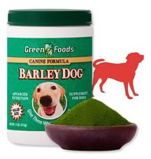 Is Barley Grass Good For Dogs