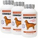 3-PACK Cosequin® DS 250 CHEWABLES (750 COUNT)