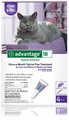 4 MONTH Advantage Flea Control Purple:  For cats over 9 lbs.