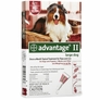 4 MONTH Advantage II Flea Control  Large Dog (for Dogs 21-55 lbs.)