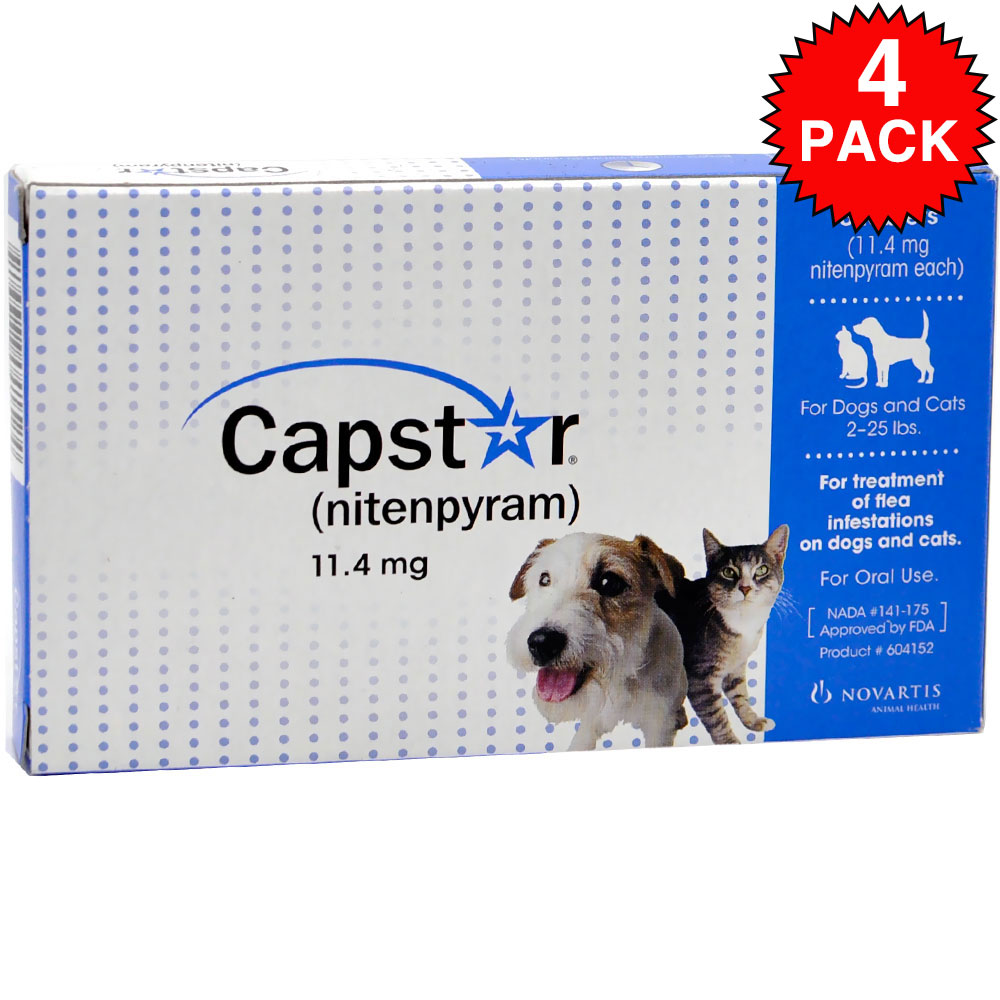 4 PACK CAPSTAR Blue for Dogs or Cats 2-25 lbs(24 tablets)