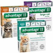 Advantage II for Cats