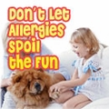 Allergy Remedies for You and Your Pet