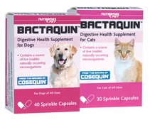Bactaquin� Digestive Health for Pets