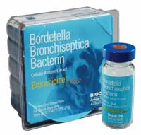 Bronchicine CAe (One Dose)