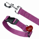 Choosing the Perfect Collar and Leash