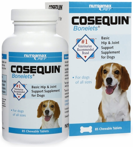 Best Joint Support For Dogs