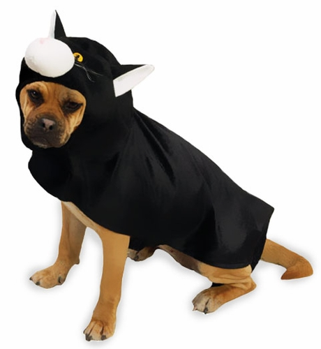 Image result for dog in cat costume