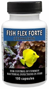 Fish Flex Forte 500mg (100 Capsules)