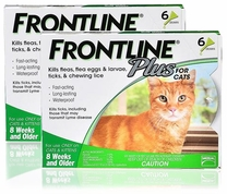 Frontline Plus Cats