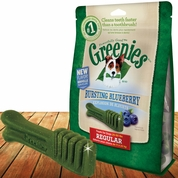 GREENIES® Bursting Blueberry Treat-Pak™ - REGULAR 12 Treats (12 oz)