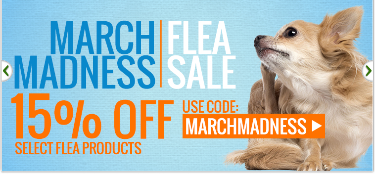 March Madness Flea Sale