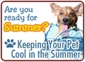 Keeping Your Pet Cool in the Summer