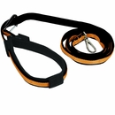 Kurgo Quantum Leash - Black with Orange Trim