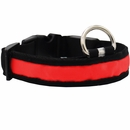 LED Safety Electric Glow Collar - Red (Large)