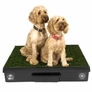 "Pet Loo Indoor Dog Yard (33"" x 33"")"
