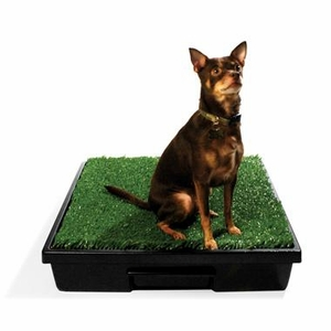"Pet Loo Mini Wee Indoor Dog Yard (24"" x 23"")"