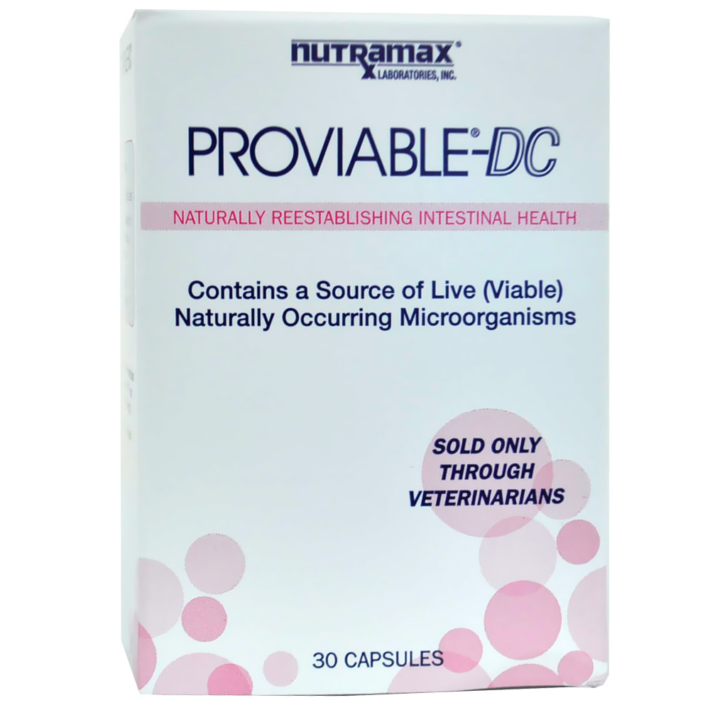 Proviable-DC - 30 capsules for Cats and Dogs