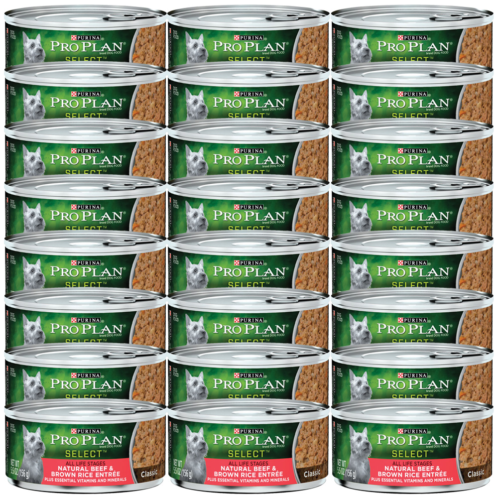 Beef Pro Dog Food For Sale