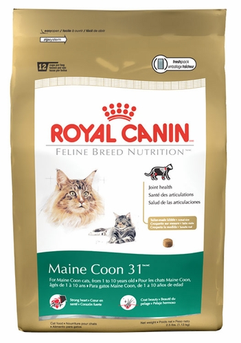 ROYAL CANIN Feline Breed Nutrition Maine Coon (6 lb)