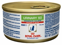 ROYAL CANIN Urinary SO Morsels in Gravy (24/3 oz) CATS