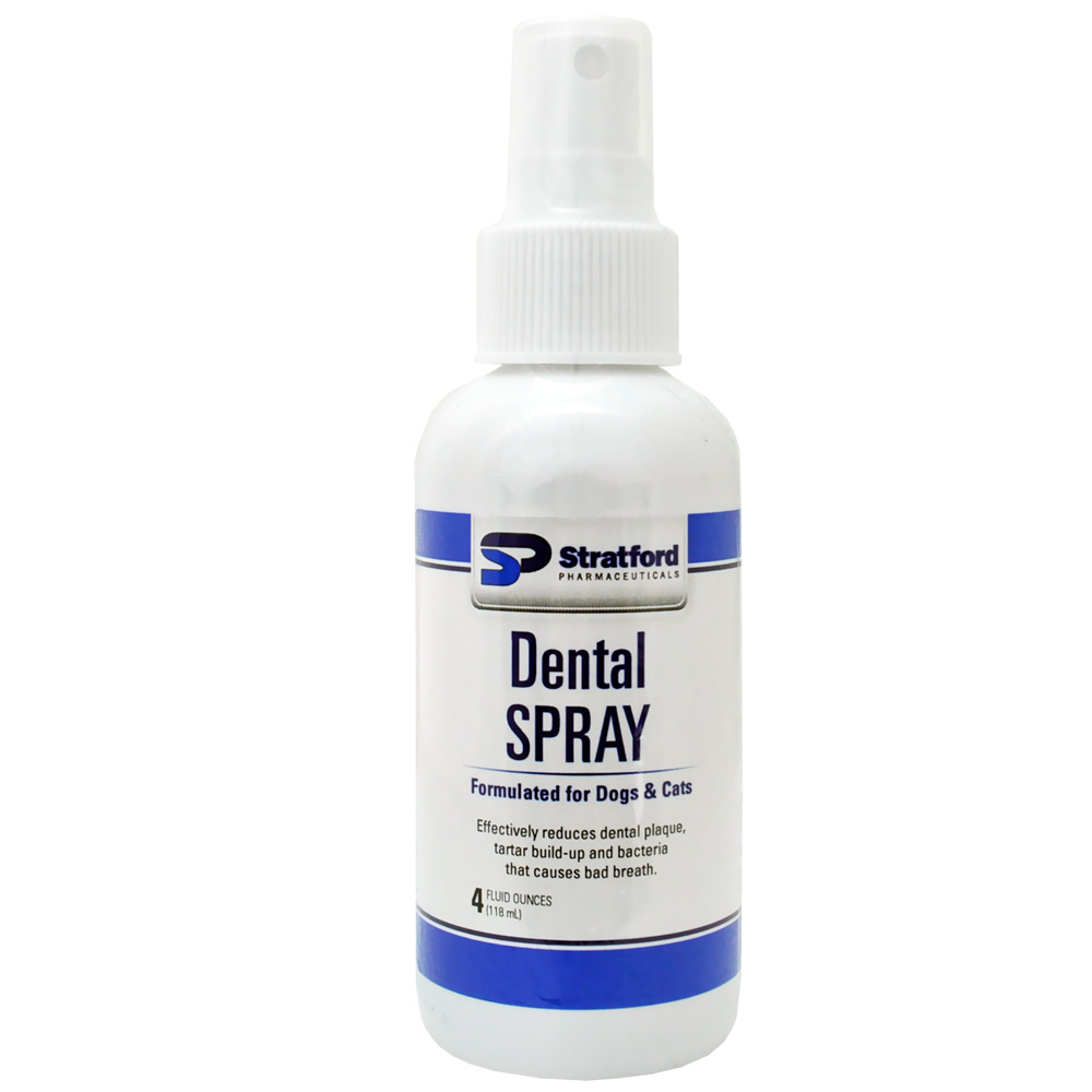 Stratford Dental Spray (4 oz)