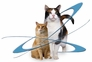 TriForce Flea & Tick for CATS