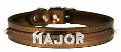 Sliders Designer Dog Collars