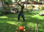 A  You Tube Video About Extreme Pumpkins