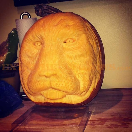 Cecil The Lion Pumpkin