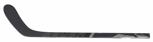 Bauer Nexus 1000 Mini Hockey Stick