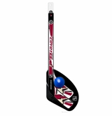 Arizona Coyotes 1 On 1 Mini Hockey Stick Set