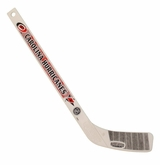 Carolina Hurricanes Plastic Mini Hockey Stick