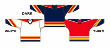 CCM Uncrested Florida Hockey Jersey